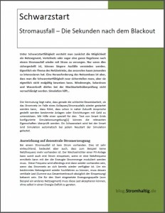 Ebook: Schwarzstart