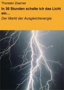 """""""Der Markt der Ausgleichenergie"""" - 1,99€ - NeoBooks (Ebook)"""