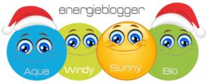 Erfolgreich eine nachhaltige Energiewende gestalten
