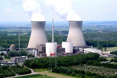 Deutschland: Vogel setzte möglicherweise Kernkraftwerk außer Gefecht 5