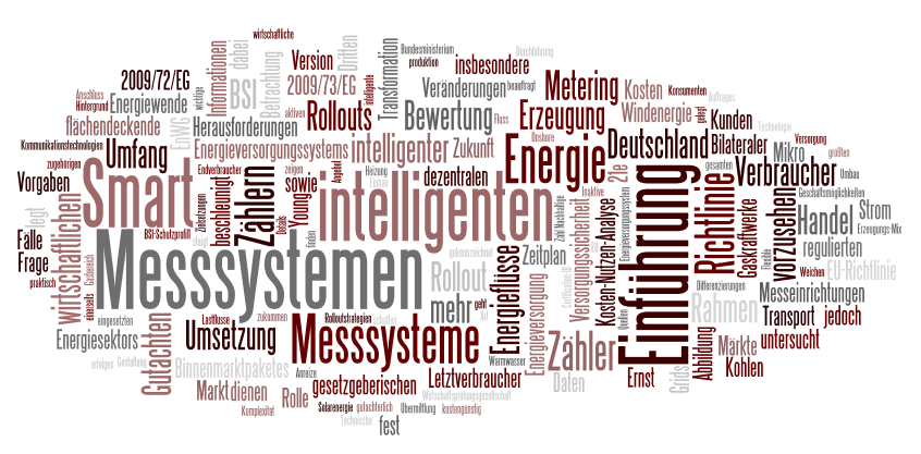 Entwurf der Messsystemverordnung von Ernst & Young