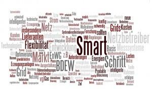 BDEW:;Roadmap Smart Grids